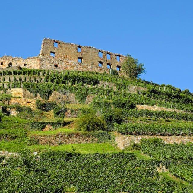 Die Staufener Burg - nur eines der vielen schönen Seiten des Markgräflerlands