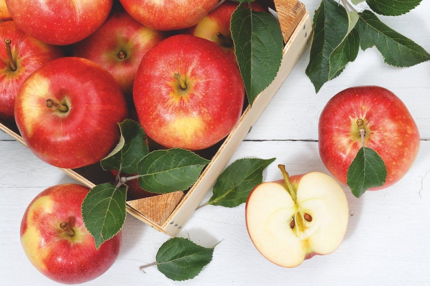 3 kg Äpfel geschenkt