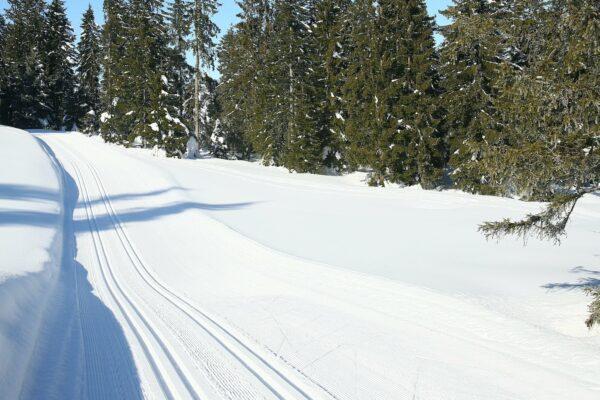 langlauf-ski-schuhe-haaf