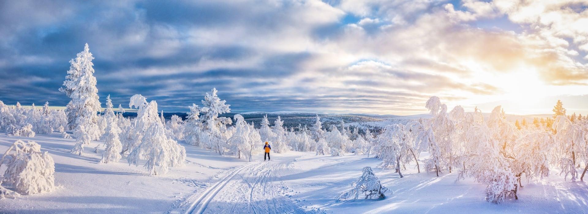 Jetzt Langlauf-Sets & Schneeschuhe mieten